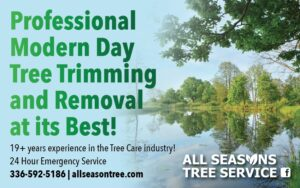 Ad-2019-4-All Seasons Tree Service