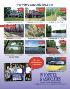 Pointer and Associates vol 4 2020 ad proof